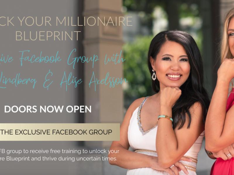 Unlock Your Millionaire Blueprint Landing Page